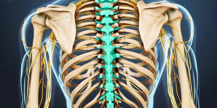 dureri articulare uleiuri esențiale teste de durere articulară